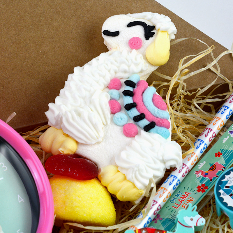 Box Surprise - Lama - sucette bonbon