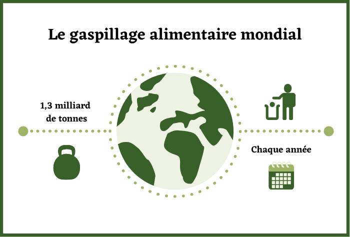 Infographie sur le gaspillage alimentaire mondial